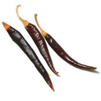 puya chili